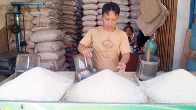 harga beras