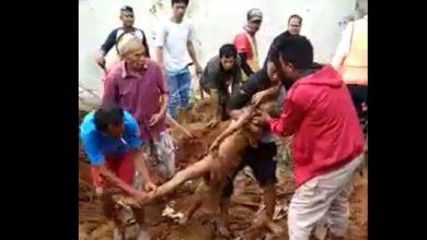 Longsor Cicurug 390x220 - Video Detik-detik Evakuasi Bocah Korban Longsor Proyek Double Track Cicurug