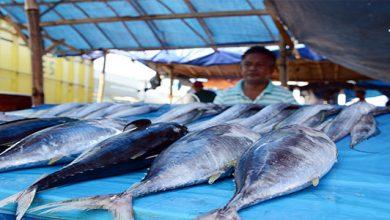 nelayan di wilayah Palabuhanratu tidak bisa melaut 390x220 - Nelayan Batasi Jarak Melaut