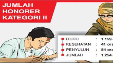 Honorer Kab Sukabumi 390x220 - Honorer Tak Kepincut PPPK