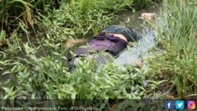 ilustrasi 7 390x220 - Mayat Perempuan Ditemukan di Selokan Desa Cimuning, Sepertinya Dibunuh