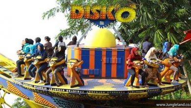 Jungleland Disko 390x220 - Ingin Liburan Makin Seru? Datangi Berbagai Wahana Permainan Di Jungleland