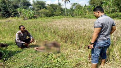 mayat orgil 390x220 - Mayat Orgil Membusuk Gemparkan Warga Warudoyong Sukabumi