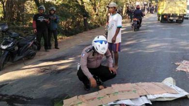 Terlindas Truk 390x220 - Mengenaskan, Megawati Terlindas Truk