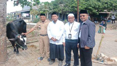bni syariah kurban 390x220 - BNI Syariah Cabang Sukabumi Salurkan 9 Ekor Hewan Kurban di Idul Adha 1440 H