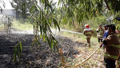 kebakaran lahan citamiang 390x220 - Hayo Ngaku, Siapa yang Bakar Lahan di Citamiang Sukabumi?