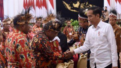 E JPEG 12 390x220 - Jokowi Setuju Buka Keran Pemekaran Di Papua