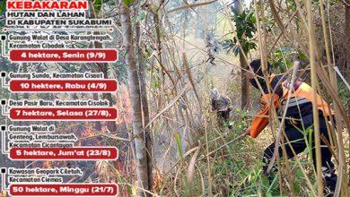 Kebakaran Hutan 390x220 - Karhutla di Sukabumi Terus Meluas