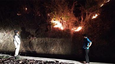kebakaran ciemas 390x220 - Kebakaran Hutan di Ciemas, 300 Hektare Gosong
