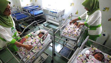 tiga bayi cantik 390x220 - Tiga Bayi Cantik Lahir di Tanggal 19-09-19