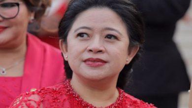 Puan Maharani 390x220 - Puan: Ada Acaman Kekacaun di Pelantikan Presiden