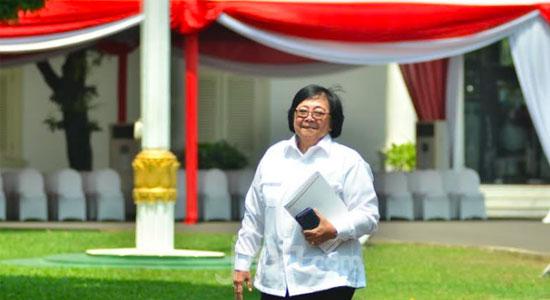 Siti Nurbaya Bakar - Siti Nurbaya Bakar Kader Partai NasDem Tetap di Kabinet Baru