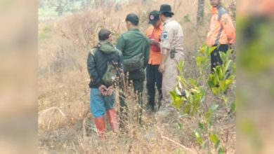kebakaran malabar 390x220 - 26 Hektare Lahan di Puncak Gunung Malabar Terbakar
