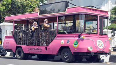 Bus Wisata Sukabumi 390x220 - Si Pinki Siap Menemani
