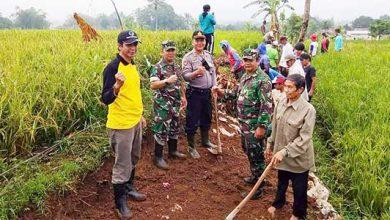 Desa Karawang Bangun Jalan 390x220 - TNI-Polri Kompak Bangun Jalan Warga Karawang