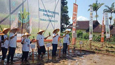 GErakan Menyongsong PErtanian 4.0 390x220 - Teknologi Smart Farming, Menghantarkan Senyum Petani Sukabumi