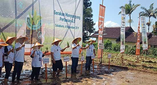 GErakan Menyongsong PErtanian 4.0 - Teknologi Smart Farming, Menghantarkan Senyum Petani Sukabumi