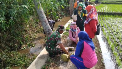 IMG 20191103 082821 390x220 - Sanjungan Heri Gunawan atas Hadirnya Kampung Wisata Amarayah Sukabumi