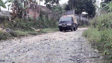 Jalan Raya Bunisari Hancur 390x220 - Rusak, Jalan Bunisari Memprihatinkan
