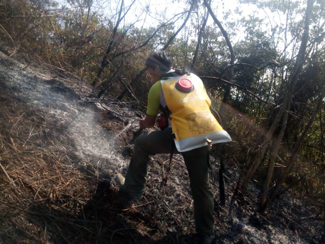 WhatsApp Image 2019 11 08 at 10.45.41 - Balai TNGHS Rilis Kronologi Kebakaran di Gunung Salak Sukabumi