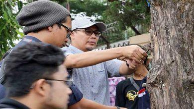 Achmad Fahmi Cabut Paku 390x220 - Fahmi Cabut Paku di Pohon