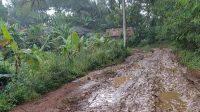 jalan Kampung Simpang Samid