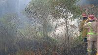 Kebakaran Nagrak Sukabumi