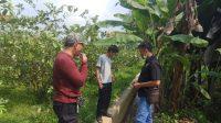 Desa Cibitung kulon