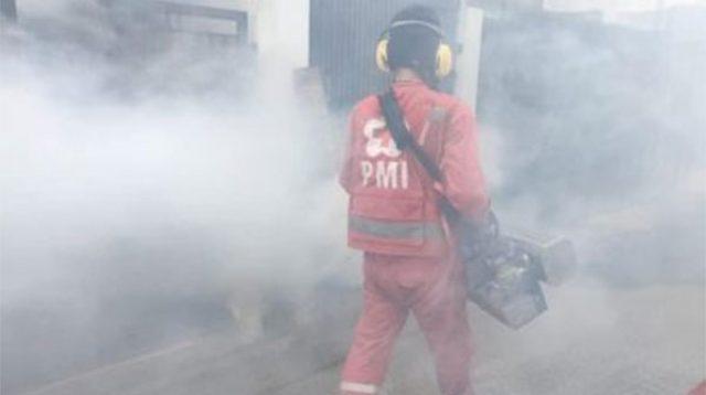 Petugas PMI melakukan fogging