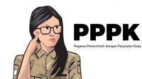Pegawai Pemerintah dengan Perjanjian Kerja (PPPK)