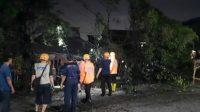 Pohon yang tumbang di Jalan Mekarsari, Bekasi